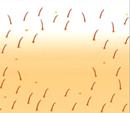 schoonheidssalon-soraya-lhe-ontharen-5